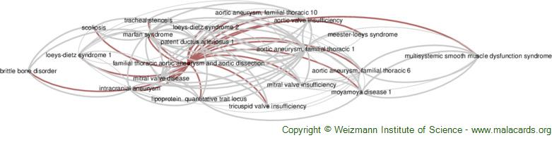 Diseases related to Familial Thoracic Aortic Aneurysm and Aortic Dissection