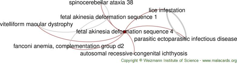 Diseases related to Fetal Akinesia Deformation Sequence 4