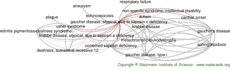 Diseases related to Gaucher Disease, Atypical, Due to Saposin C Deficiency
