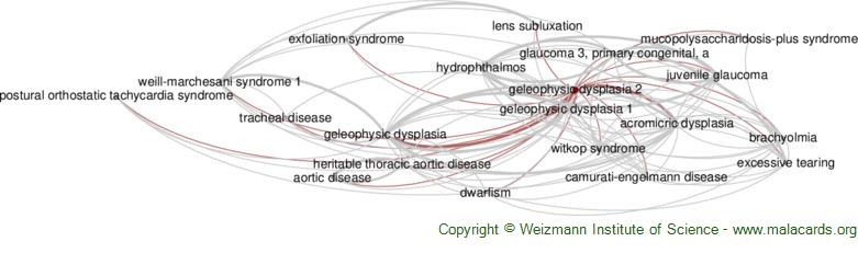 Diseases related to Geleophysic Dysplasia 2