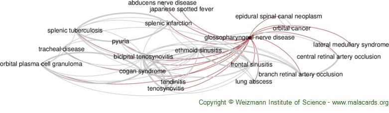 Diseases related to Glossopharyngeal Nerve Disease