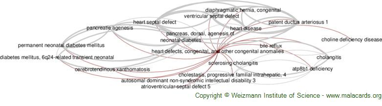 Diseases related to Heart Defects, Congenital, and Other Congenital Anomalies