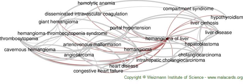 Diseases related to Hemangioma of Liver