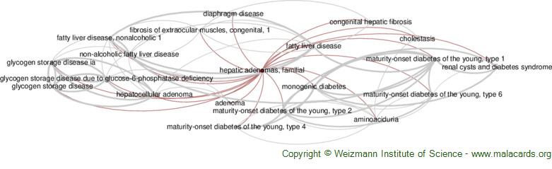Diseases related to Hepatic Adenomas, Familial