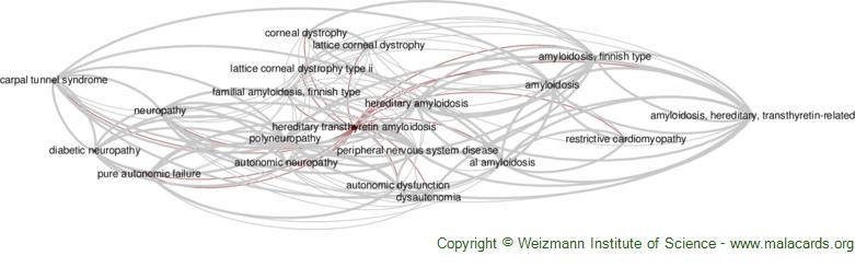 Diseases related to Hereditary Transthyretin Amyloidosis