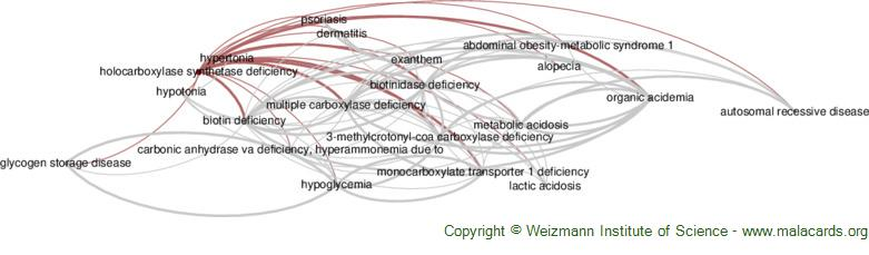 Diseases related to Holocarboxylase Synthetase Deficiency