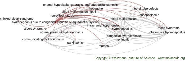 Diseases related to Hydrocephalus Due to Congenital Stenosis of Aqueduct of Sylvius