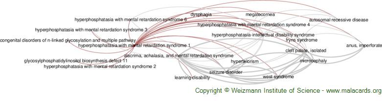 Diseases related to Hyperphosphatasia with Mental Retardation Syndrome 1