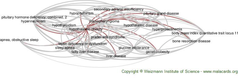 Diseases related to Hypothalamic Obesity