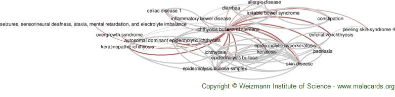 Diseases related to Ichthyosis Bullosa of Siemens