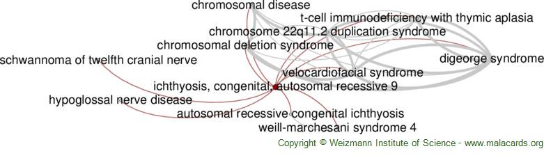 Diseases related to Ichthyosis, Congenital, Autosomal Recessive 9