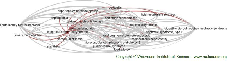 Diseases related to Idiopathic Nephrotic Syndrome