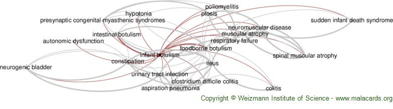 Diseases related to Infant Botulism