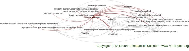 Diseases related to Infantile Hypotonia