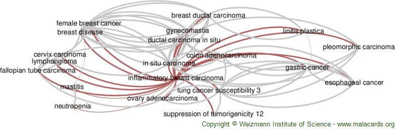 Diseases related to Inflammatory Breast Carcinoma