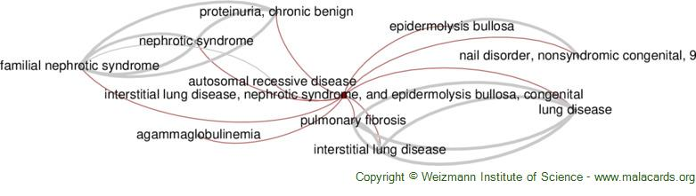 Diseases related to Interstitial Lung Disease, Nephrotic Syndrome, and Epidermolysis Bullosa, Congenital