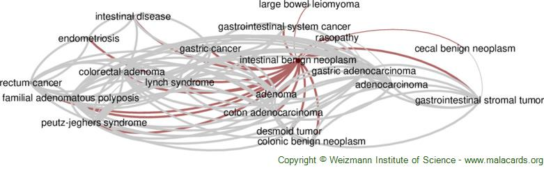 Diseases related to Intestinal Benign Neoplasm