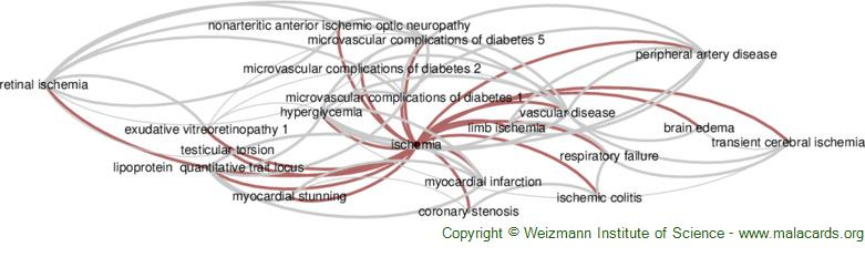 Diseases related to Ischemia