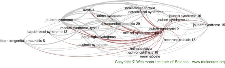 Diseases related to Joubert Syndrome 2