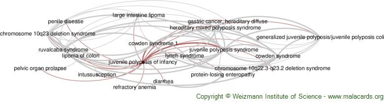 Diseases related to Juvenile Polyposis of Infancy