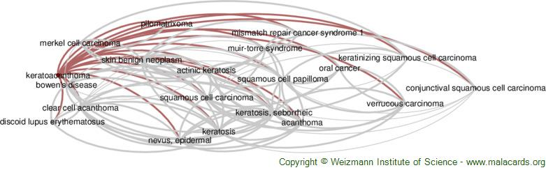 Diseases related to Keratoacanthoma