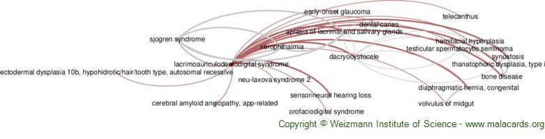 Diseases related to Lacrimoauriculodentodigital Syndrome