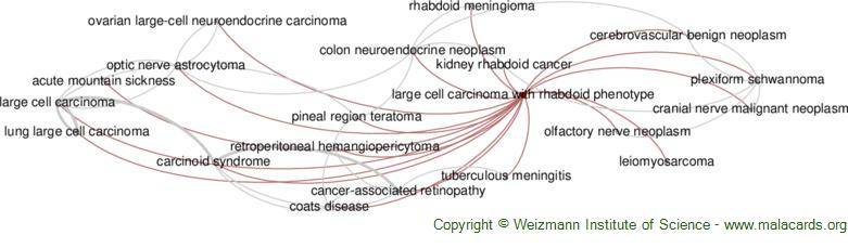 Diseases related to Large Cell Carcinoma with Rhabdoid Phenotype