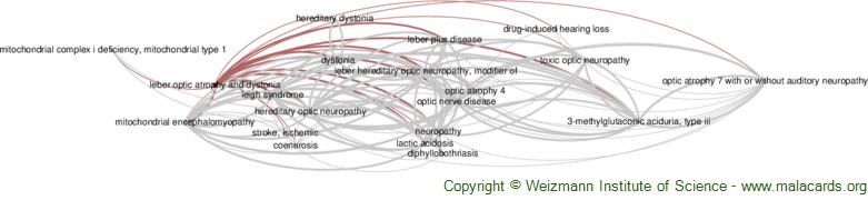 Diseases related to Leber Optic Atrophy and Dystonia