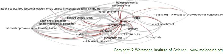 Diseases related to Lens Subluxation