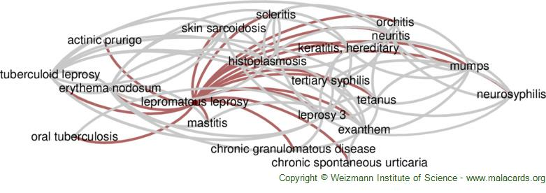 Diseases related to Lepromatous Leprosy