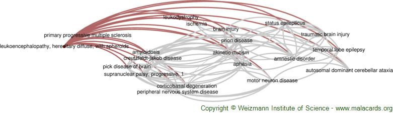 Diseases related to Leukoencephalopathy, Hereditary Diffuse, with Spheroids