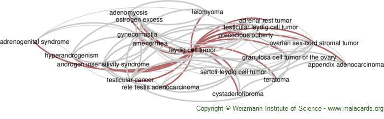 Diseases related to Leydig Cell Tumor