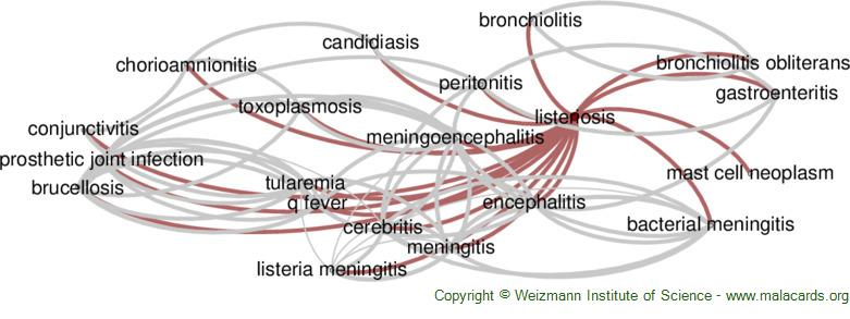 Diseases related to Listeriosis