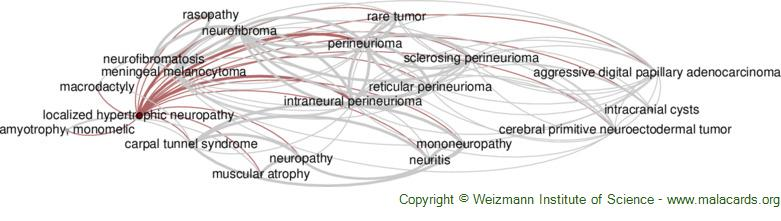 Diseases related to Localized Hypertrophic Neuropathy