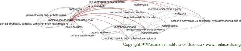 Diseases related to Malonyl-Coa Decarboxylase Deficiency