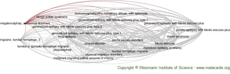 Diseases related to Megalencephaly, Autosomal Dominant