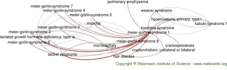 Diseases related to Meier-Gorlin Syndrome 1