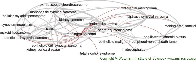 Diseases related to Meninges Sarcoma