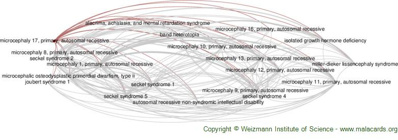 Diseases related to Microcephaly 17, Primary, Autosomal Recessive