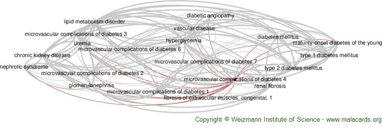Diseases related to Microvascular Complications of Diabetes 4