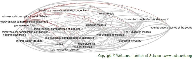 Diseases related to Microvascular Complications of Diabetes 6