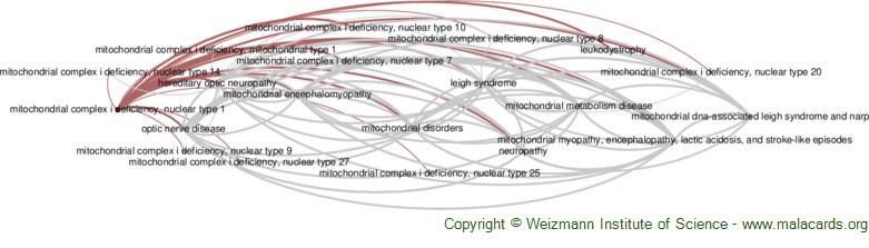 Diseases related to Mitochondrial Complex I Deficiency, Nuclear Type 1