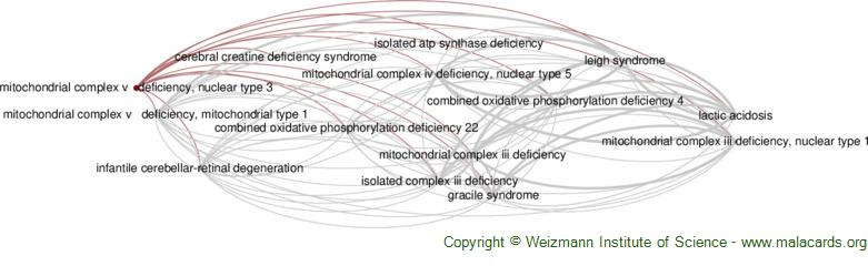 Diseases related to Mitochondrial Complex V   Deficiency, Nuclear Type 3