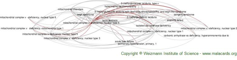 Diseases related to Mitochondrial Complex V   Deficiency, Nuclear Type 5