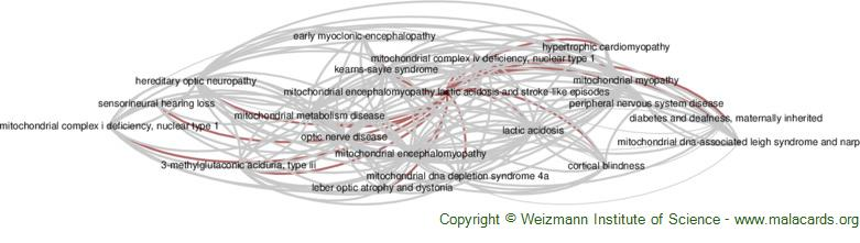 Diseases related to Mitochondrial Encephalomyopathy Lactic Acidosis and Stroke-Like Episodes