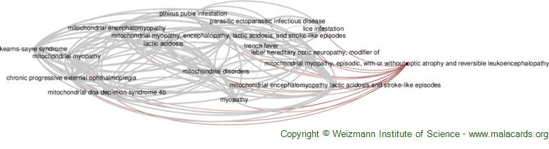 Diseases related to Mitochondrial Myopathy, Episodic, with or Without Optic Atrophy and Reversible Leukoencephalopathy