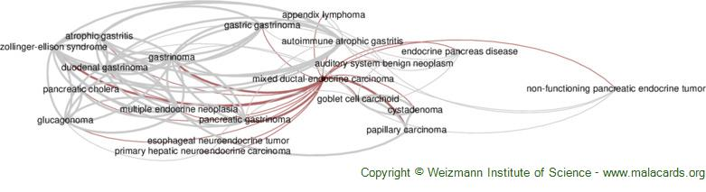 Diseases related to Mixed Ductal-Endocrine Carcinoma