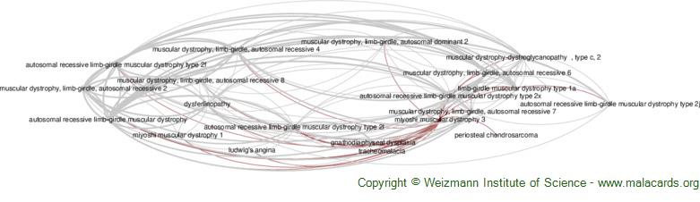 Diseases related to Miyoshi Muscular Dystrophy 3