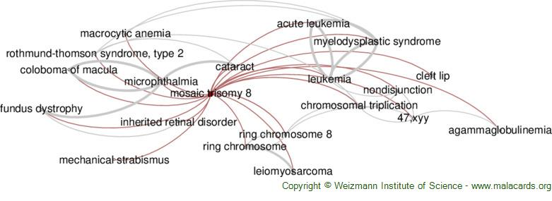 Diseases related to Mosaic Trisomy 8