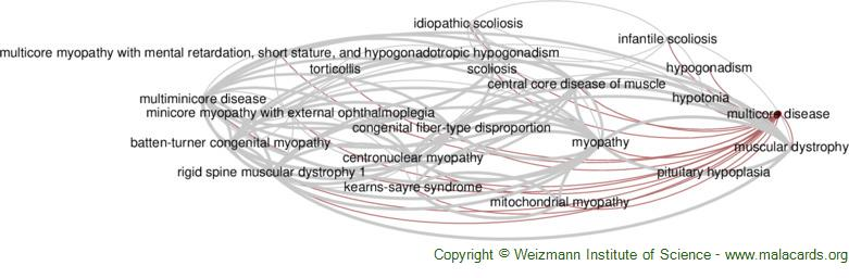 Diseases related to Multicore Disease